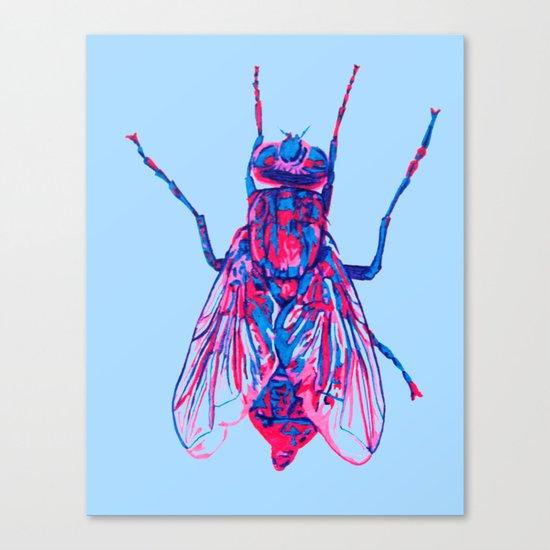 House Fly Canvas Print