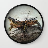 turtle Wall Clocks featuring turtle by Tanja Riedel