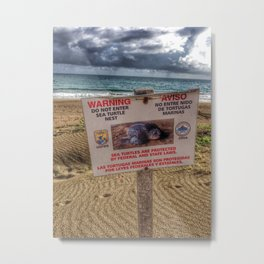 Turtle Beach Metal Print