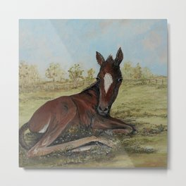 PERFECT POLO PONY Metal Print