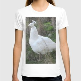 Albino peahen T-shirt