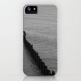 Lakeshore Study iPhone Case