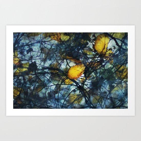 Tangled Winter Art Print