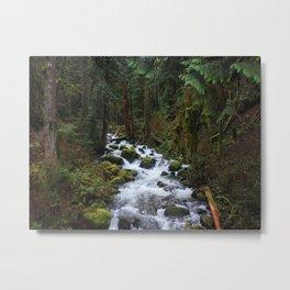 Multnomah Creek Metal Print