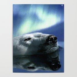Aurora Dreaming - Swimming Polar Bear Poster