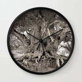 1000 years old chestnut tree Wall Clock