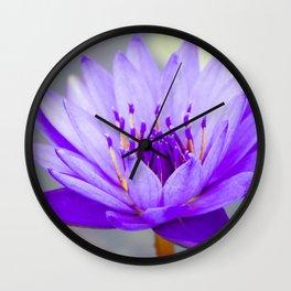 Blue Lotus In Bloom Wall Clock