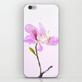 purple Buahinia iPhone Skin