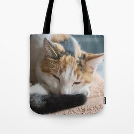 dozing tri-colored calico cat Tote Bag
