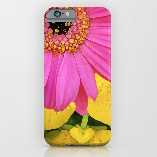 STELLA!!!!!!!! iPhone & iPod Case