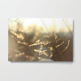 lightfields Metal Print