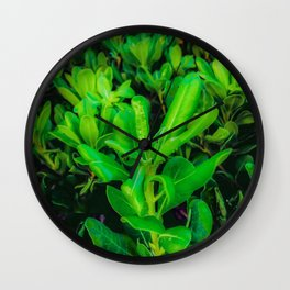 green leaves plant texture background Wall Clock