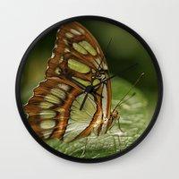 malachite Wall Clocks featuring Malachite Butterfly by Cindi Ressler Photography