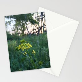 Wildflowers at Dusk Stationery Cards