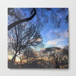 Tomkins Square Park at Dusk Metal Print