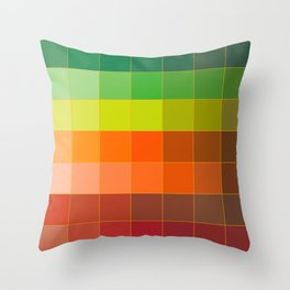 Colour Pass Throw Pillow