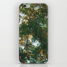 look up 03 iPhone & iPod Skin