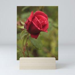 Rose for you Mini Art Print