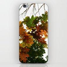 fading away iPhone & iPod Skin