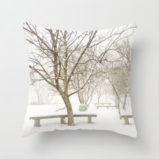 Cold Throw Pillow