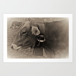Black and White Cows in Switzerland Art Print
