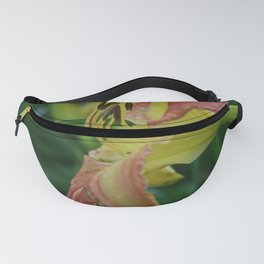 Pleasing the Pirate Fanny Pack