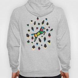 Rainbow Anigami Horse Hoody