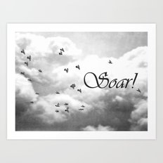 Soar Birds in Flight A610BW Art Print