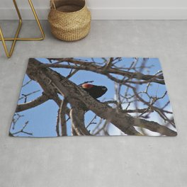 Red Winged Blackbird in a Tree Rug
