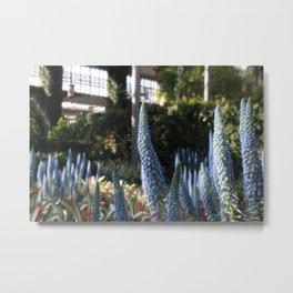Field of Blue Flowers Metal Print