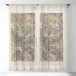 Vintage Lizards Sheer Curtain