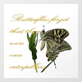 Butterflies Forget They Were Once Caterpillars Proverbial Text Art Print