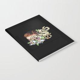 glissading glance notebook Notebook