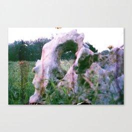 Eye Sight Canvas Print