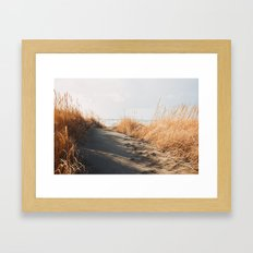 Trail to the beach Framed Art Print