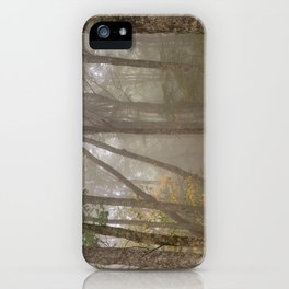 Misty Spruce Knob Forest iPhone Case