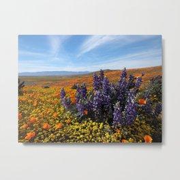 Poppy Field Superbloom Metal Print