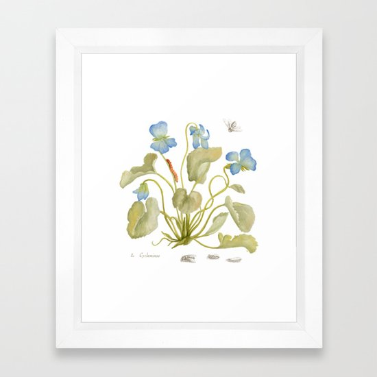Cyclamen Botanical Watercolor by honeypaper