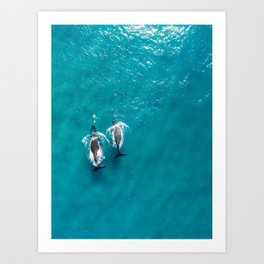 Partners Art Print