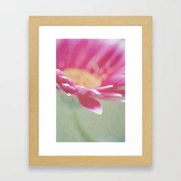 Sweet Springtime Framed Art Print