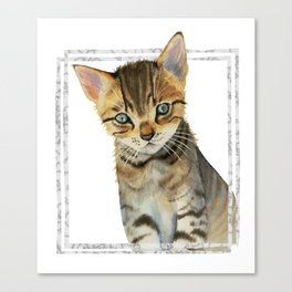 European Shorthair Kitten Painting with Faux Marble Frame Canvas Print