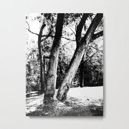 Together and Apart Metal Print