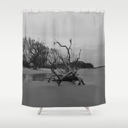 Ghost Trees - Driftwood Beach Shower Curtain