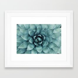 Aloe Green Agave Framed Art Print