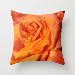 Tangerine Rose Throw Pillow