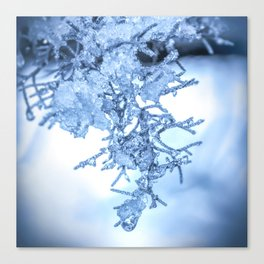 Winter Snowmelt by Murray Bolesta! Canvas Print