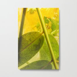 Locust Tree #18 Metal Print