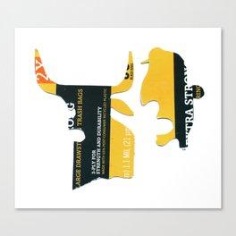 Bull Whisperer Canvas Print