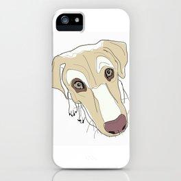 Labrador Dog In Your Face (tan) iPhone Case