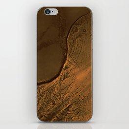 Familiar Desert 01 iPhone Skin